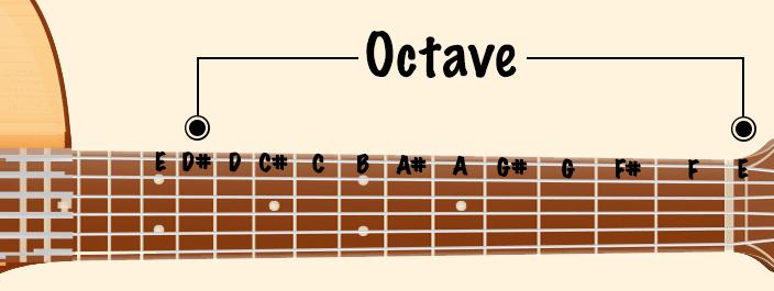 guitar terms - octave